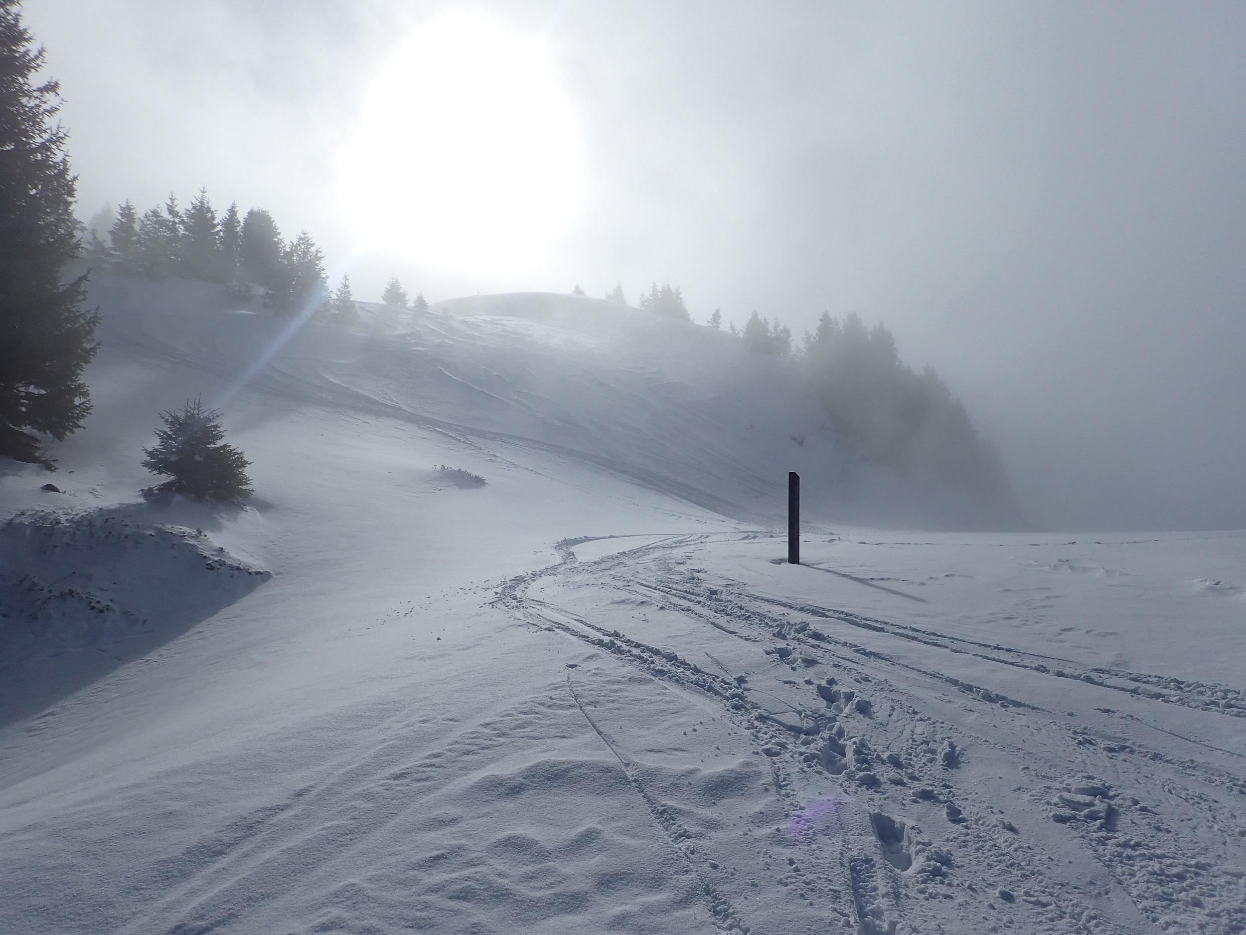 Traces de ski hors piste